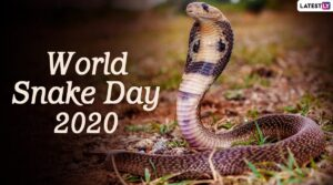 "Recognizing Texas high school ""snake"" teams on World Snake Day"